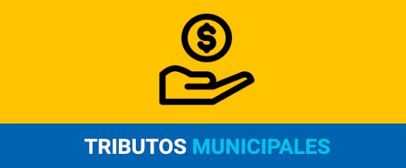 Tributos Municipales 1.1